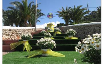 Flower days in Son Bou