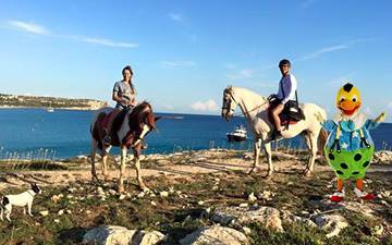 Kiko horse rides through el Prat in Son Bou in Menorca
